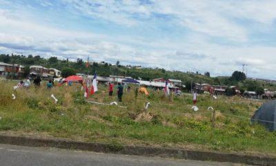 ¿Desacuerdo entre autoridades? No se pudo desalojar terreno invadido en Osorno