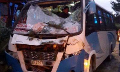 Caída de árbol en El Portón dejó cinco heridos
