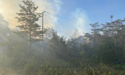 Incendio forestal en Lago Chapo