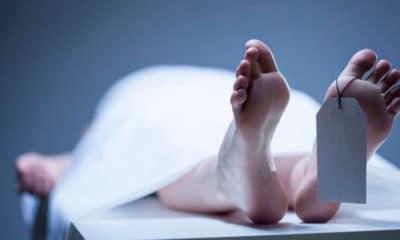 Cadáver en congelador