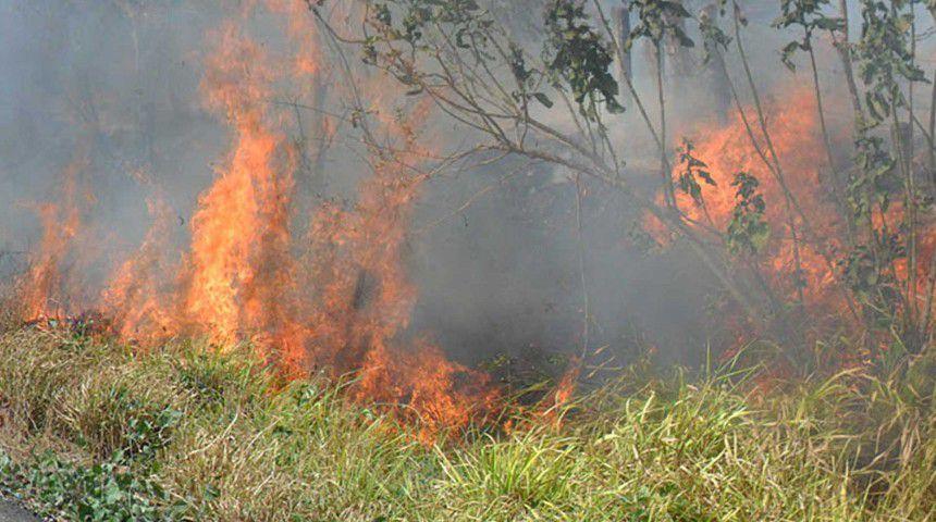 Incendio en pastizales